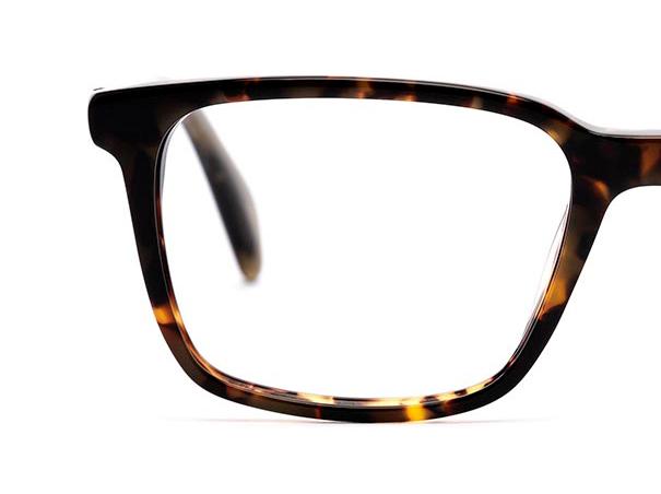 Half a pair of tortoiseshell glasses